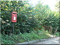 ST7808 : Ibberton: postbox № DT11 167 by Chris Downer