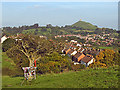 ST4938 : South Glastonbury from Wearyall Hill : Week 39