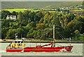 """J1417 : The """"Still Ostrea"""" at Warrenpoint by Albert Bridge"""