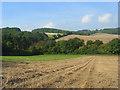 SU7994 : Farmland and woodland, Piddington by Andrew Smith