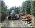 NN9350 : Stacking logs on forest track by Russel Wills