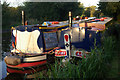 SJ3024 : Hotel boats at Maesbury by Stephen McKay