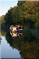 SJ3024 : Montgomery Canal, Maesbury by Stephen McKay