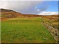NN9037 : Pasture near North Amulree by Dr Richard Murray