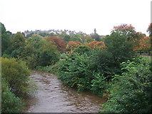 NS5666 : River Kelvin by David Brown
