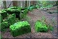 NZ5910 : Ruined Wall, Coate Moor by Mick Garratt