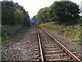 TM3761 : Grays Lane Level Crossing by Adrian Cable