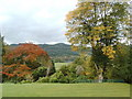 SD3695 : View out the back of Sawrey House Country Hotel by Darrin Antrobus