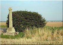 SE4738 : Lord Dacre's cross by David Pickersgill