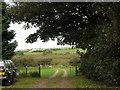 SH4177 : Cors Bodwrog fen from near Bodewran Bach by Eric Jones