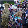 TL2797 : Whittlesea Straw Bear festival by Tiger