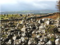 NS4376 : The Long Crags - field of boulders by Lairich Rig
