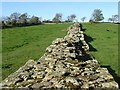 NY8871 : Hadrian's Wall, broad and narrow by Oliver Dixon