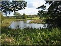 NZ2437 : Holywell Hall Pond by Les Hull