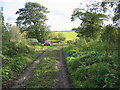 NZ2436 : Footpath leading to the River Wear by Les Hull