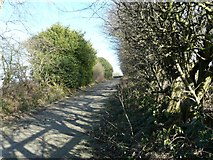 SJ9693 : Footpath to Hanging Bank by Gerald England