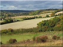 SU8695 : Farmland, Hughenden by Andrew Smith