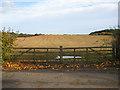 SO7433 : Double gates, Bromesberrow by Pauline E