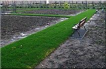 J5080 : Walled garden, Castle Park by Rossographer