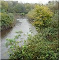 SJ9091 : River Tame by Gerald England