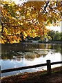 SE2769 : Autumn at the lakeside by Gordon Hatton