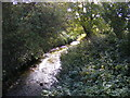 TM2348 : Stream off Lodge Road by Adrian Cable