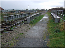 TA0623 : Barrow Haven Railway Bridge by David Wright