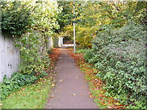 TM3863 : Path to the B1121 North Entrance by Geographer