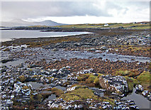 NG3238 : Shore of Loch Bracadale by Richard Dorrell