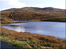 B8113 : Lough Sallagh - Crovehy Townland by Mac McCarron