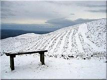 SJ1662 : A seat and cut heather below Moel Famau by John S Turner