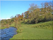 SD9058 : Pennine Way south of Airton by John Illingworth