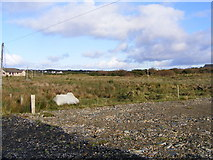 G7195 : Rough grazing, Sandfield Townland by Mac McCarron