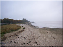TA0225 : The Hessle Foreshore in November by David Wright