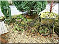 NY8545 : The bicycle as planter by Oliver Dixon