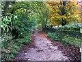 SE2037 : Footpath - Carr Road by Betty Longbottom