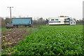 TG3532 : Parsnip harvest in progress by Evelyn Simak