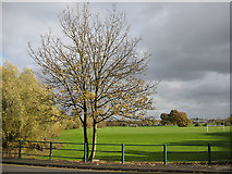 SO8832 : Playing fields, Tewkesbury by Pauline E