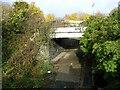 NZ2063 : Old railway bridge near Scotswood Bridge by Oliver Dixon