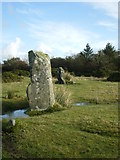 SN1329 : Gors Fawr Standing Stones by Richard Law
