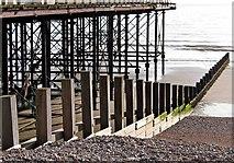 SZ9398 : Pier supports Bognor Regis by L S Wilson