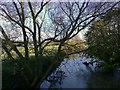 SP7536 : River Ouse, Thornton by mick finn