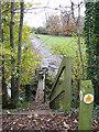 TG0923 : Path to Kerdiston Road by Evelyn Simak