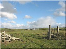 SH3368 : Cliff top pasture land above Porth Cwyfan by Eric Jones