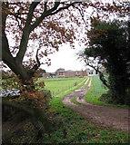 TG0723 : Track to Brick Kiln Farm by Evelyn Simak