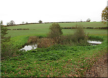 TG0723 : Pond by footpath junction by Evelyn Simak