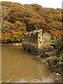SX4663 : Mill ruins, Blaxton Creek by Derek Harper