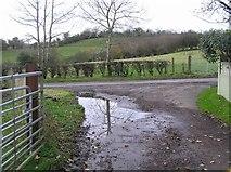 H5657 : Lane, Rarogan by Kenneth  Allen