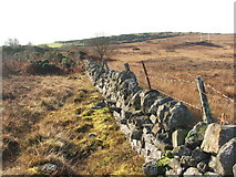 NS3778 : Dry-stone wall by Lairich Rig