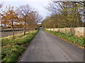 TM3461 : New Road, Great Glemham by Adrian Cable